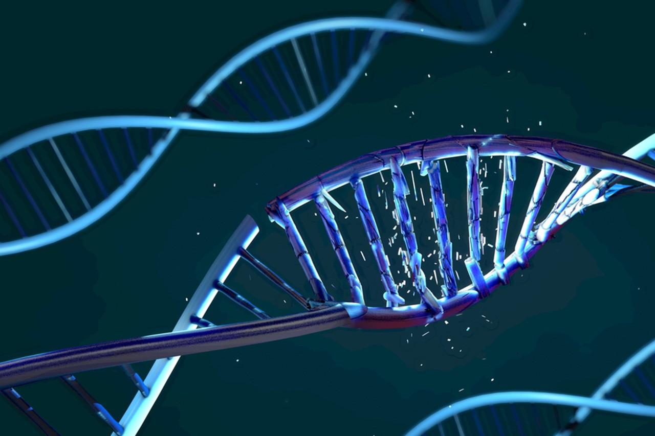 Damaged DNA Strand