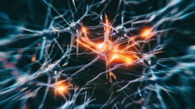 inflammation in neuron