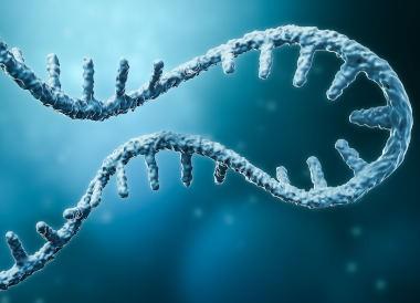 RNA molecule, artistic represenation